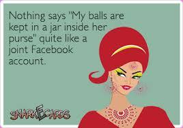 shared facebook accounts | a pilot and a normal girl via Relatably.com
