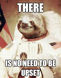 There is no need to be upset - Astronaut sloth - quickmeme via Relatably.com