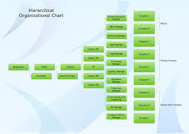 hierarchical organization structure