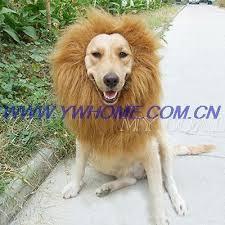 2019 Large <b>Pet Dog Cat</b> Lion Wigs <b>Mane</b> Hair Festival Party Fancy ...