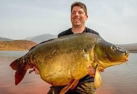 Morocco Carp - Big <b>Wild Mirrors</b> Made In Morocco ... | Facebook