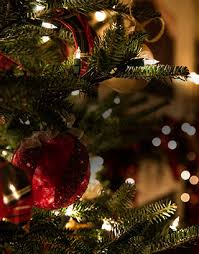 <b>Christmas Tree</b> World: Buy Artificial <b>Xmas Trees</b> & Lights