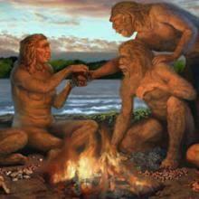 introduction to human evolution essay   essayexample essay on human evolution