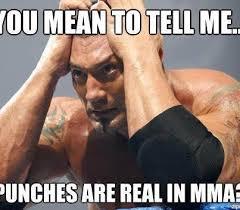 WWE Memes. I remember this girl!! To funny! | WWE | Pinterest ... via Relatably.com
