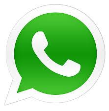 Resultado de imagem para icone whatsapp