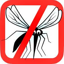 Resultado de imagen para mosquito muerto