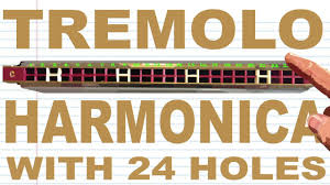 How to Play a <b>Tremolo Harmonica</b> with <b>24 Holes</b> - YouTube