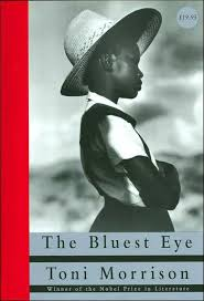 the vip library must list the visibility project the bluest eye