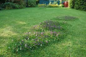 Image result for german lawn