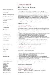 Sales Executive Resume   Hashdoc
