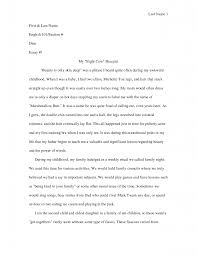 college essays application profile essay example college essays    high school essay example