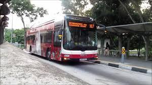 「buses stop」の画像検索結果