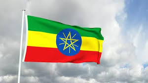 Image result for animated ethiopian flags