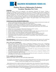 sample resume technology director cipanewsletter personal banker resume objectivesample it resume example