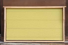 Αποτέλεσμα εικόνας για problem sheet wax for bees