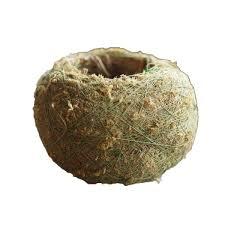 2019 <b>Caioffer</b> /Moss Terrarium Handmade <b>Flower Pot</b> Ball Shapes ...