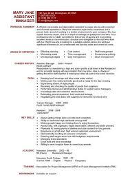 management resume objective operation manager resume
