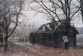 Resultado de imagen de chernobyl mutaciones