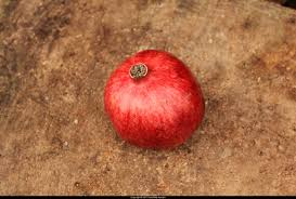 how to eat a pomegranate khaled hosseini s the kite runner pomegranate 001cr