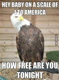 July 4th Memes! - BabyCenter via Relatably.com