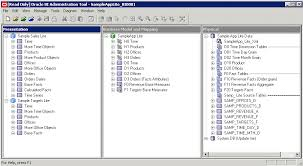 this image is an example of the populated screen obiee administration