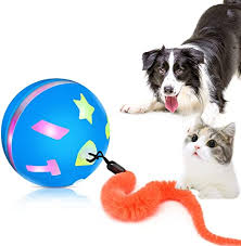 Interactive Cat Toy Ball, USB Rechargeable Motion ... - Amazon.com
