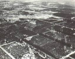 「160 acres of former orange groves in Anaheim, California」の画像検索結果