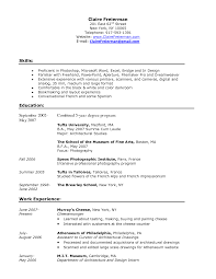 resume for experienced professionals sample cipanewsletter it resume sample sample resumes for experienced it professionals