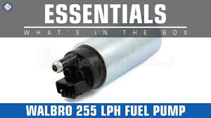 <b>Walbro 255Lph Fuel Pump</b>- Whats in the Box? - YouTube
