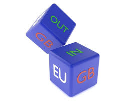 Image result for eu referendum