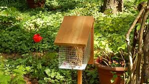 build your own mason bee house build diy mason