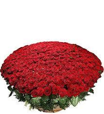 """<b>Композиция из 501</b> розы Гран При """"Любовь всегда права ..."""