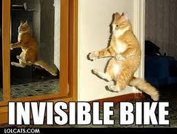 veterinary_memes_invisiblebikecat.jpg via Relatably.com
