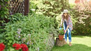 10 товаров для подготовки сада к летнему сезону - Бобёр.ру