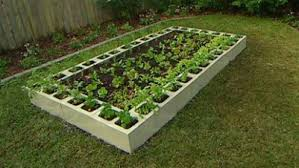 Small Picture Vegetable Gardening Ideas pueblosinfronterasus