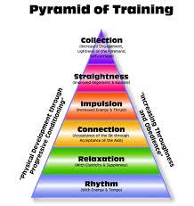 pyramid of training