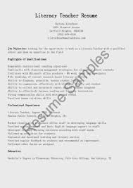 technical literacy resume ningessaybe me computer it technical skills resume writing tips monster com