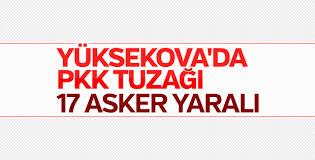 Yüksekova'da terör örgütü PKK'dan hain saldırı