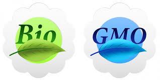 essays on genetic engineering   pros   www wmestocard comessays on genetic engineering   pros
