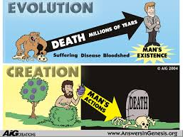 death  evolution vs  creation   apologetics  amp  intelligence ministryif