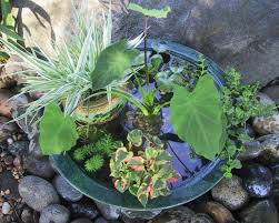 diy patio pond: related to pondpot intermediatejpgrendhgtvcom related to