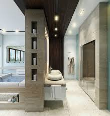 designing bathroom layout:   luxury bathroom layout