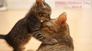 Image result for mother day