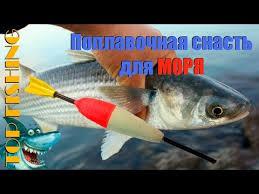 <b>Ловля</b> с берега на <b>море</b>. Поплавочная снасть. TOP FISHING ...