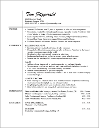 Example Executive Resume  free blank resume template sample  cfo     FAMU Online