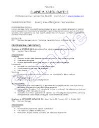 banking sample resume banker sample resume example investment banking resume examples for banking jobs