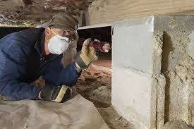 Image result for Reasons To Get A Termite Inspection For Your Home
