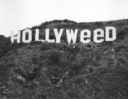 these guys claim they re responsible for the hollyweed sign vice fernandez i saw the original hollyweed sign