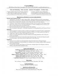cashier job duties on resume cashier job description resumes cashier duties resume duty cashier cashier job description resume description of cashier