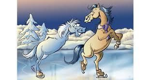 Bildergebnis für Pferde Schlittschuhe